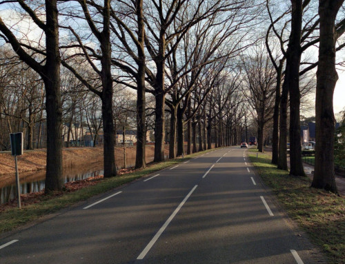 In de media: Verkeersexpert over 'wrede' Apeldoornse weg